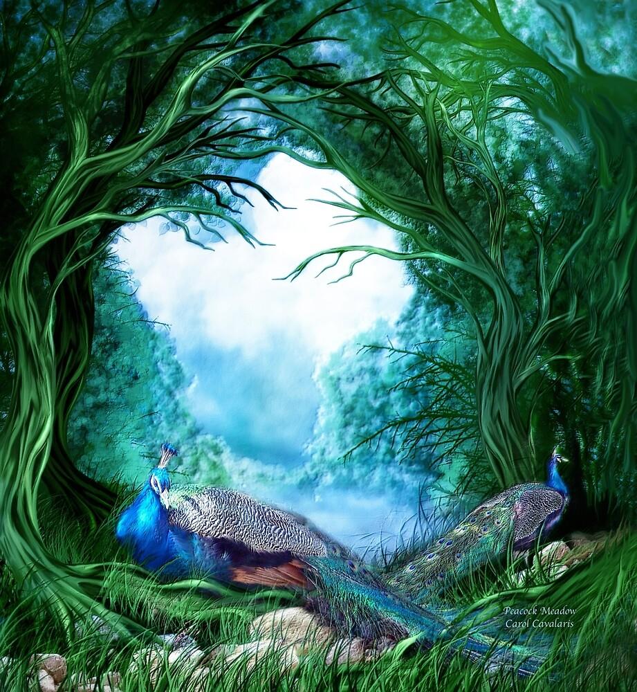 Peacock Meadow By Carol Cavalaris Redbubble
