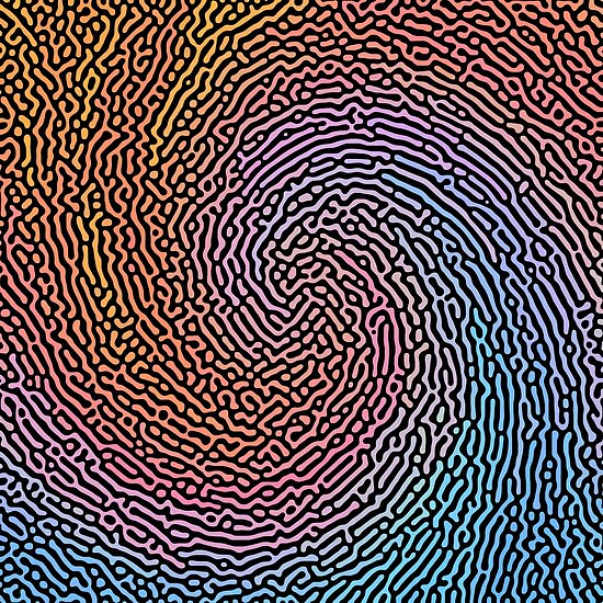 Fingerprint Wave
