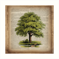 """hippie hipster fashion botanical art vintage oak tree"