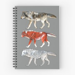 Wolf Skeleton Diagram Vw Wiring For Dune Buggy Quotwolf Anatomy Quot Spiral Notebooks By Pip Abraham Redbubble