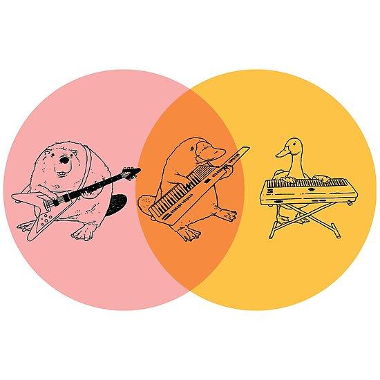 platypus venn diagram aem wideband keytar purple orange yellow photographic