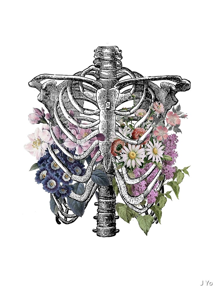 Rib Cage Drawing With Flowers : drawing, flowers, Floral, Greeting, Jilliangyo, Redbubble