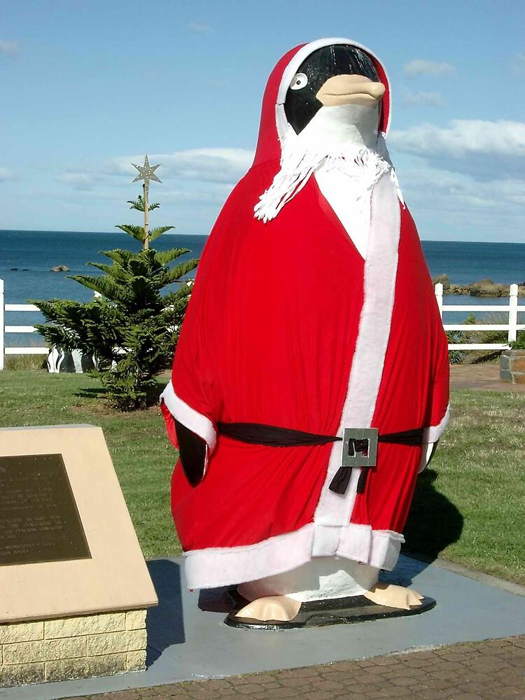 The Big Santa Penguin Penguin Tasmania By Peterzphotoz