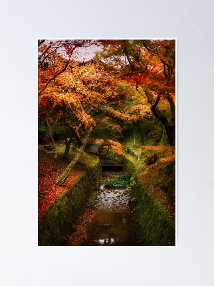 poster beau paysage d automne d un jardin japonais avec des erables colores le long d un cours d eau tofukuji kyoto art photo imprimer par awenartprints redbubble
