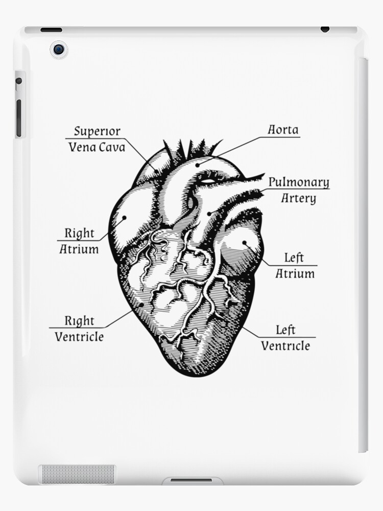 anatomical heart diagram clipsal 2 gang light switch wiring funny cardiac nurse med student valentines day shirt