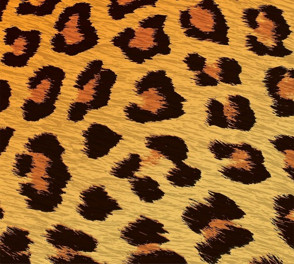 """leopard Print Animal Gold & Brown Cheetah Skin"