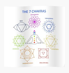 the seven chakras of the human body with their names poster by amelislam redbubble [ 1000 x 1000 Pixel ]