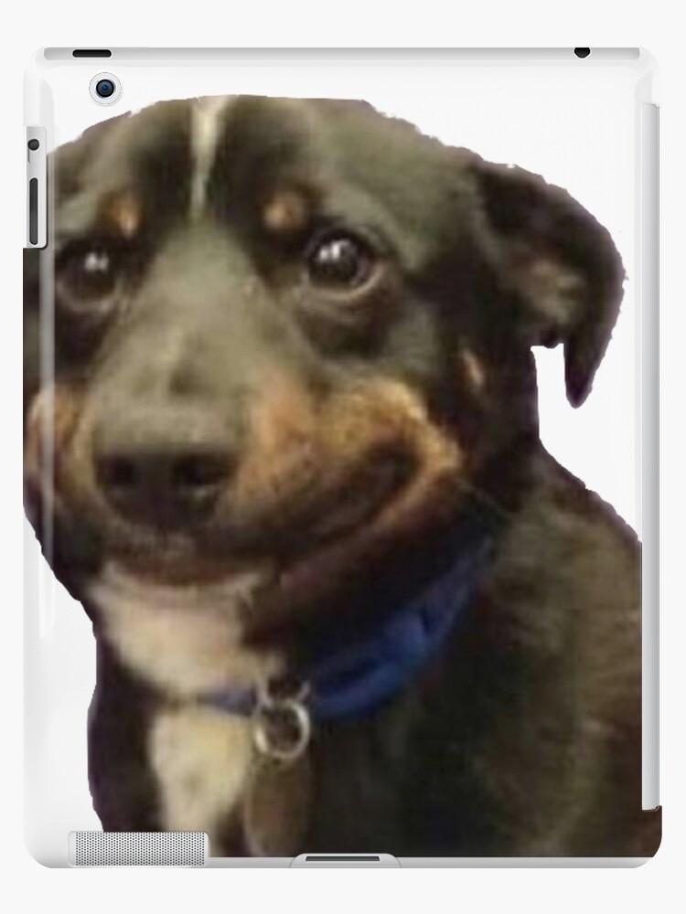 Dog Smile Meme : smile, Awkward, Smile, Meme