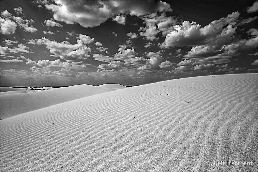 Monahans Sandhills State Park Texas by Jeff Blanchard