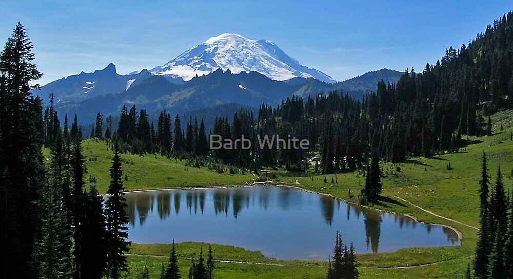 Tipsoo Lake in Mt Rainier National Park by Barb White