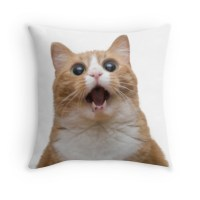 """funny cat face"" Throw Pillows by frantasticcath 