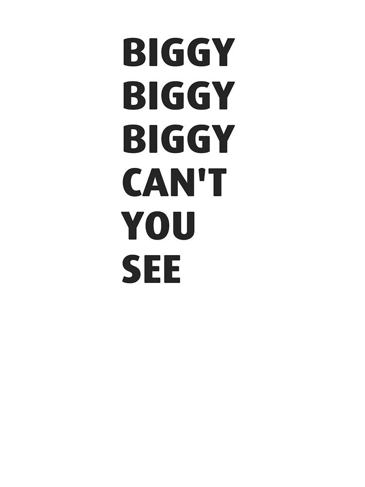 Biggie Smalls - Hypnotize W/Lyrics - YouTube