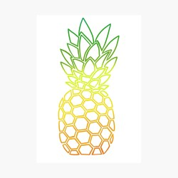 Pineapple Outline Poster by RobinWDesign Redbubble