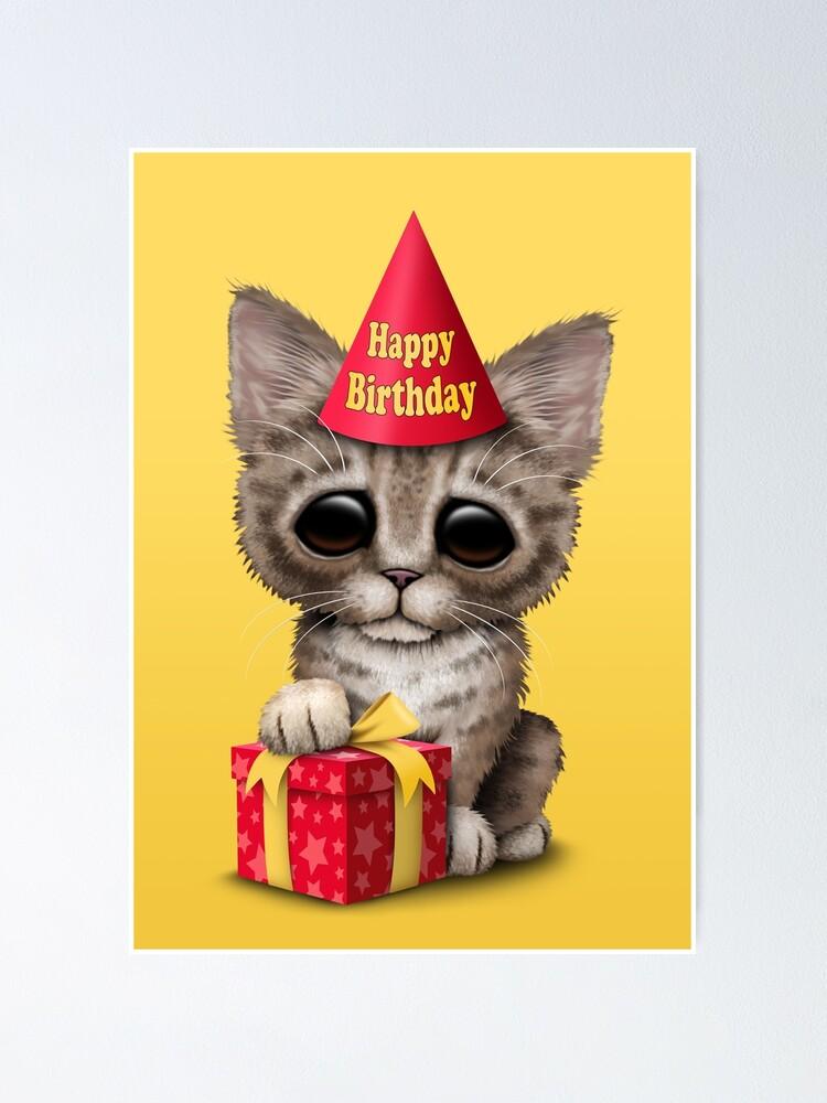 Happy Birthday Kitten Images : happy, birthday, kitten, images, Happy, Birthday, Kitten