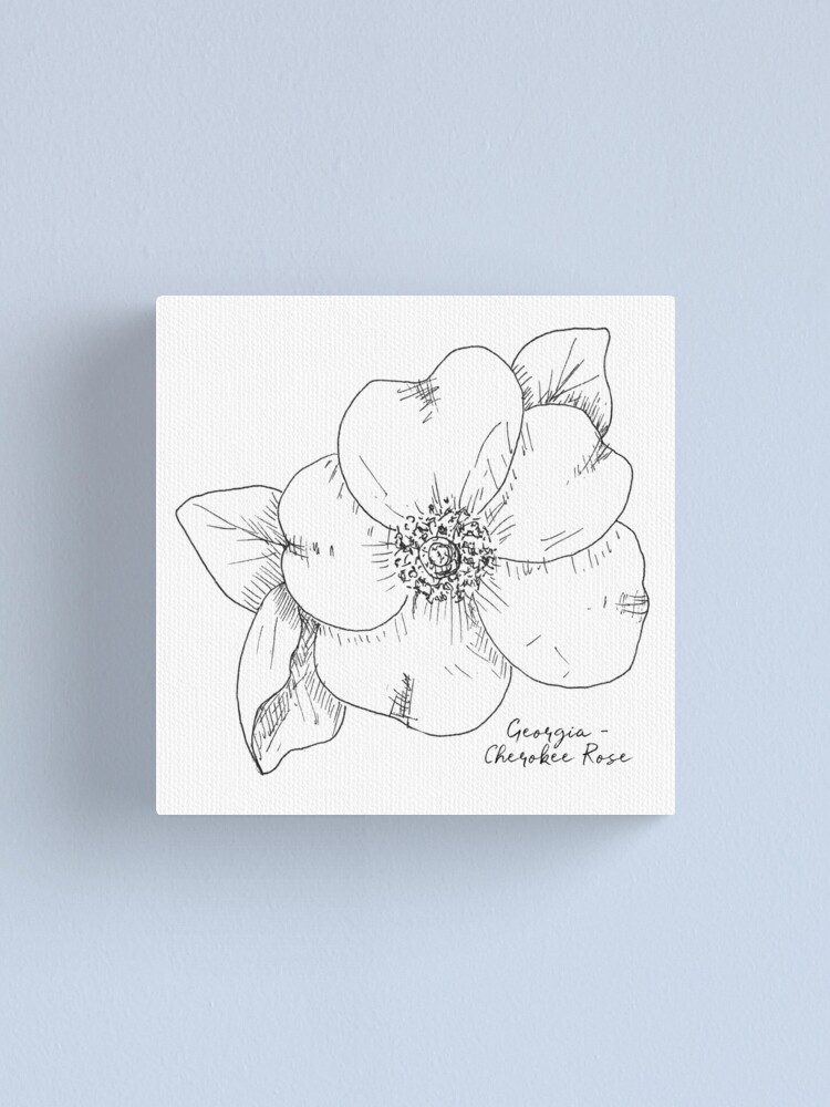 Cherokee Rose Georgia State Flower By Journey Home Made Canvas Print By Journeyhomemade Redbubble
