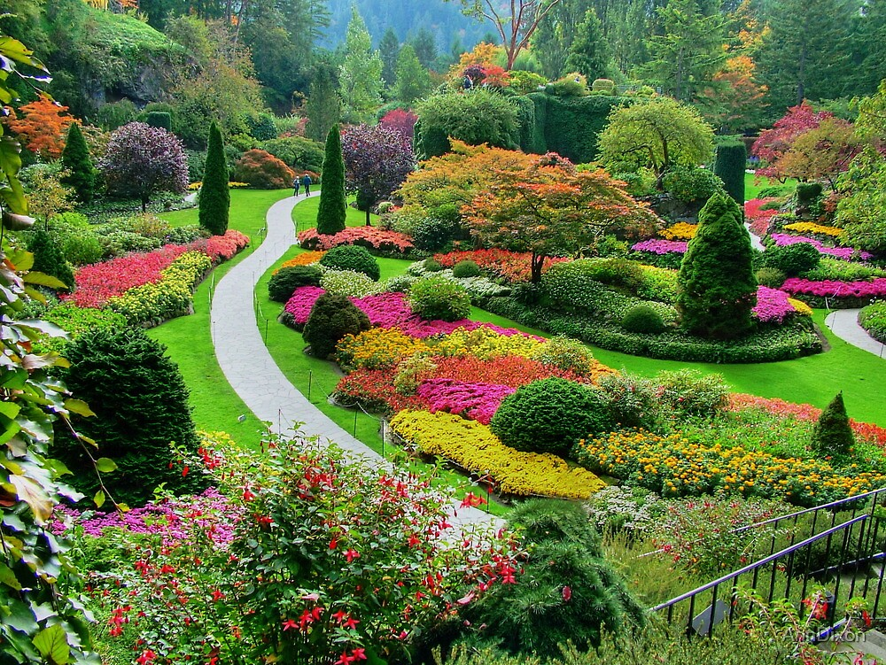 Butchart Gardens BC Canada in the Fall by AnnDixon