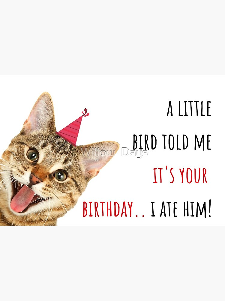 100+ Birthdays ideas | cat birthday memes, happy birthday cat, cat...