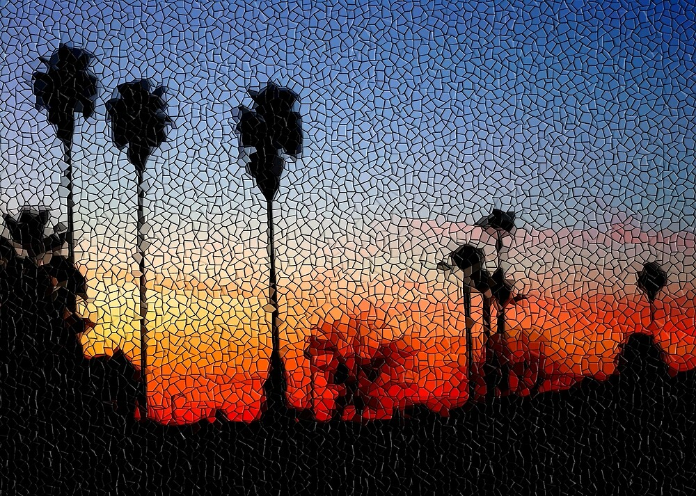Sunset Mosaic by csouzas  Redbubble