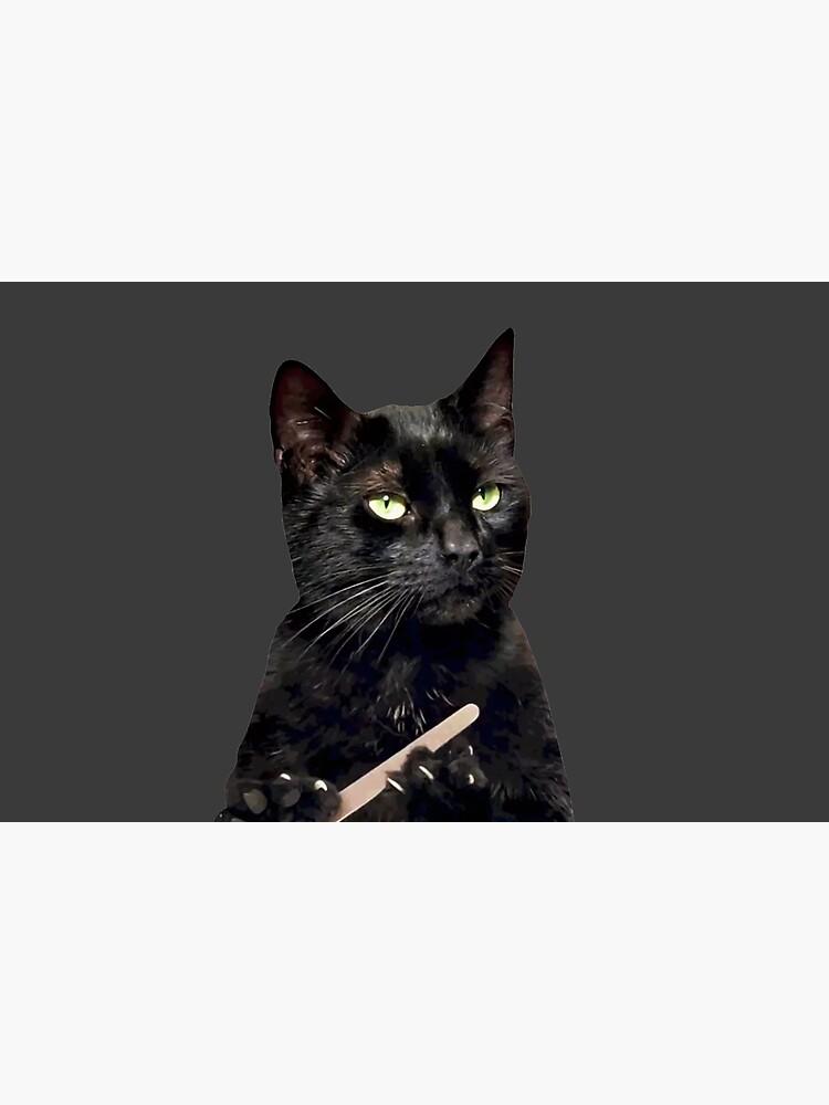 Black Cat Filing Nails : black, filing, nails, Black, Filing, Nails, Laptop, Michaelroman, Redbubble