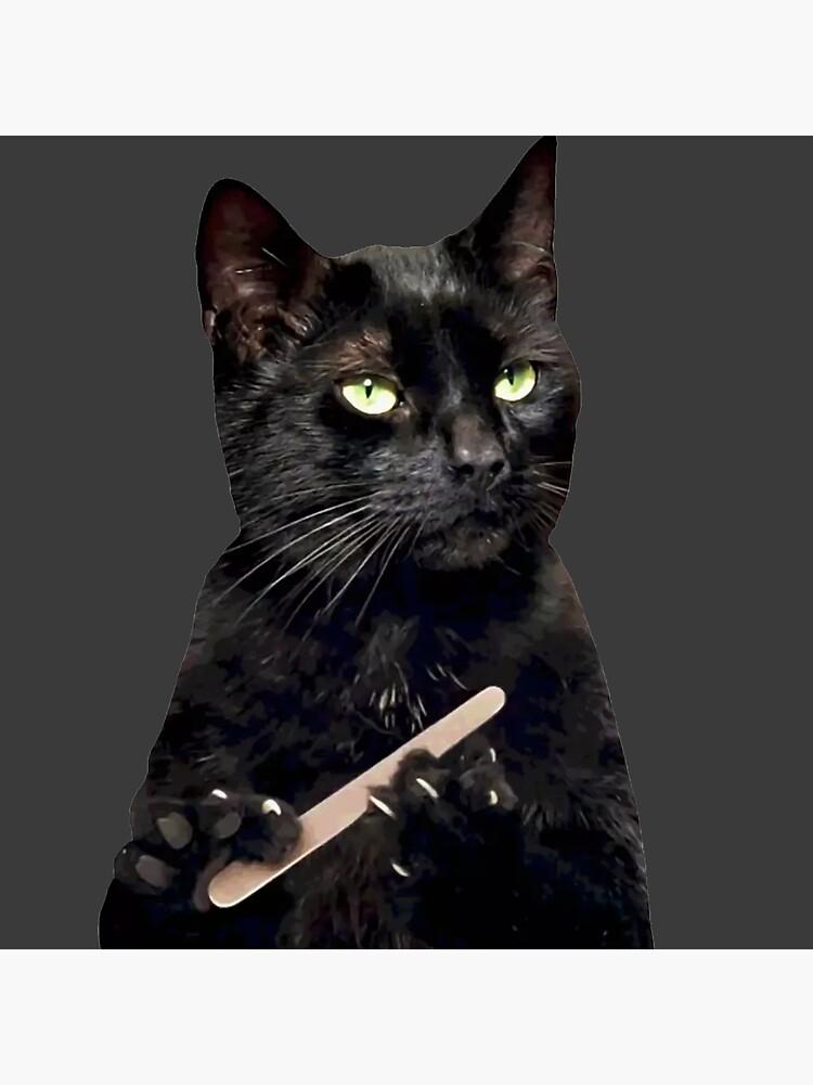 Black Cat Filing Nails : black, filing, nails, Black, Filing, Nails, Board, Print, Michaelroman, Redbubble
