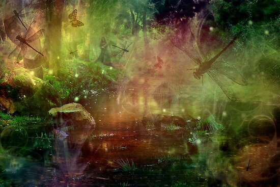 fireflies & dragonflies by tracey mac