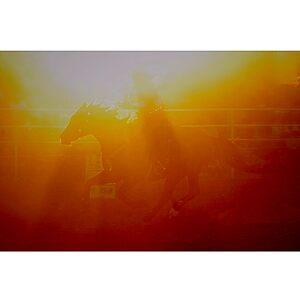 Sun-racer by Penny Kittel
