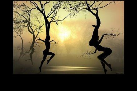https://i0.wp.com/ih3.redbubble.net/work.2080885.6.flat,550x550,075,f.dancing-trees.jpg?resize=440%2C294