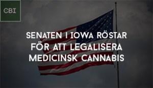 senaten i Iowa röstar för att legalisera medicinsk cannabis