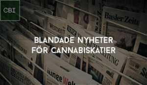 Blandade nyheter för Cannabiskatier