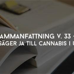 Sammanfattning V33 Läkare säger ja till cannabis i Uppsala