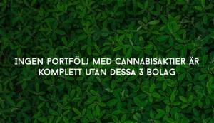 Ingen portfölj med cannabisaktier är komplett utan dessa 3 bolag