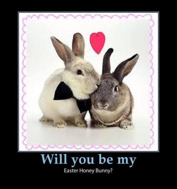 Funny Easter Memes