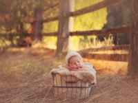 Милые спящие новорожденные