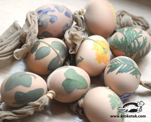 необчыные яйца