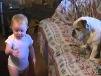 Строгий выговор от малыша