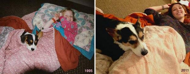 дети и животные через несколько лет
