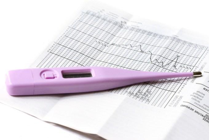 базальная температура у беременных