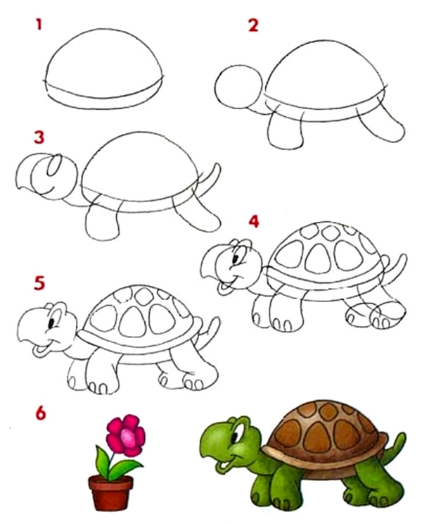 рисуем черепаху