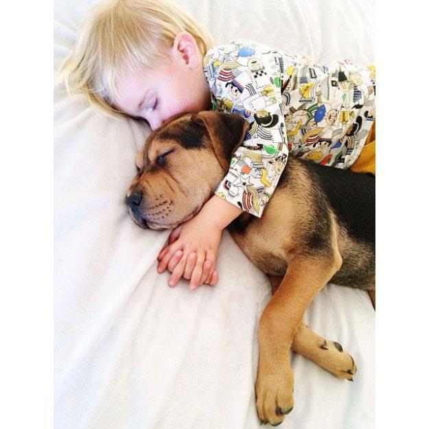 сладкая спящая парочка10