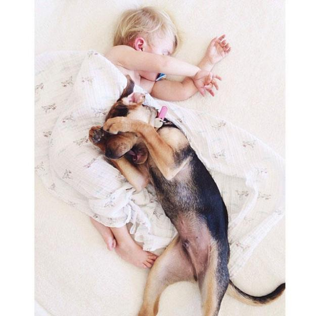 сладкая спящая парочка9