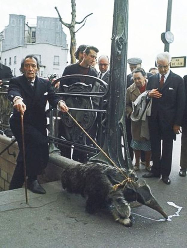 Сальвадор Дали со своим ручным муравьедом выходит из метро, 1969