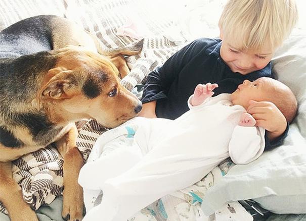 дети дружат с собакой