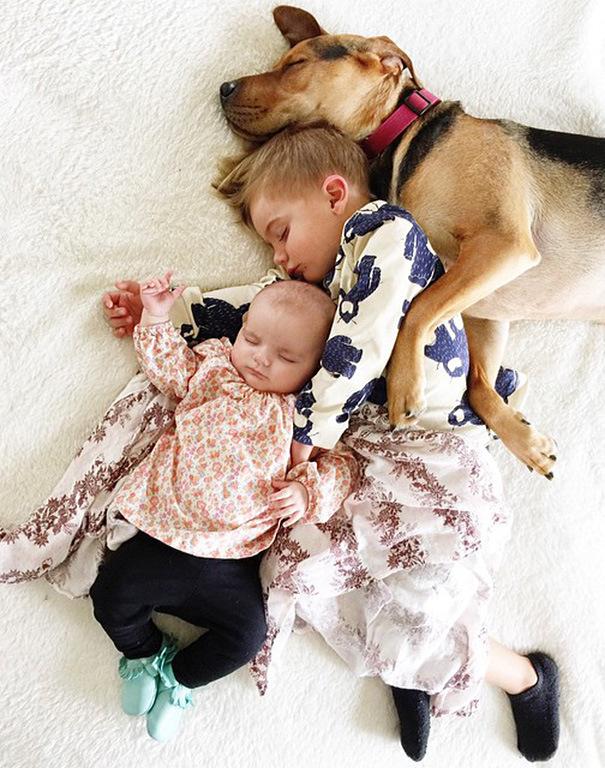 спящее трио