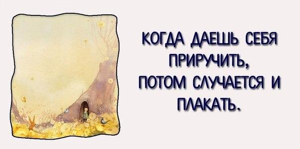 лучшие цитаті из маленького принца
