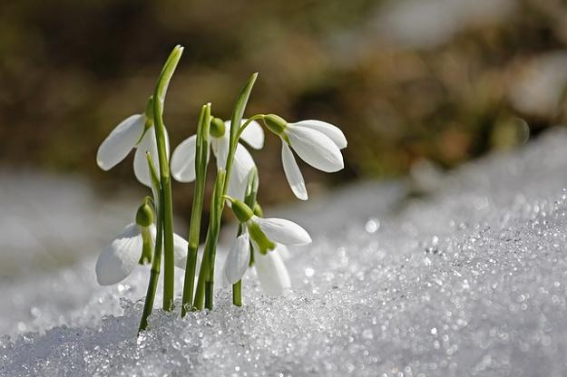 Успеть до весны: 10 пунктов, которые сделают вашу жизнь лучше