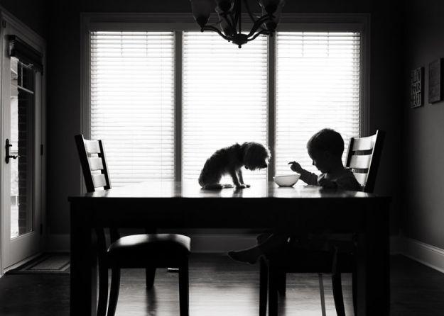 Время завтрака, Карен Осиек, США (Категория Тень 1-ое место)