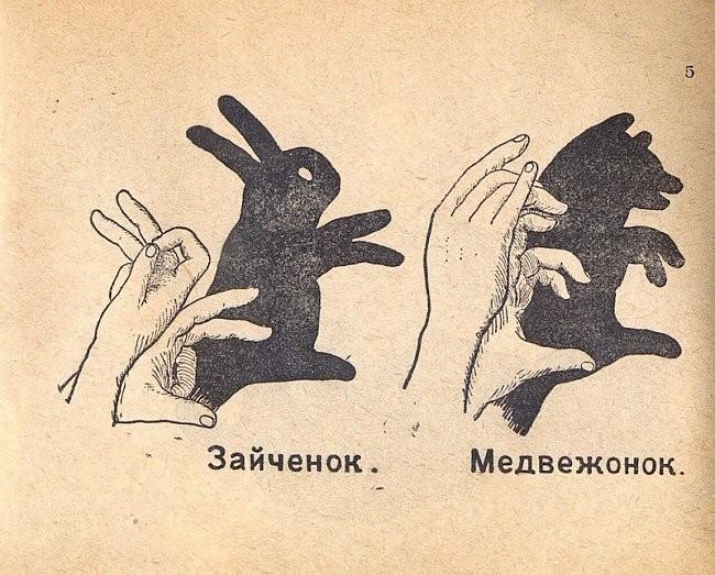 тень зайчик