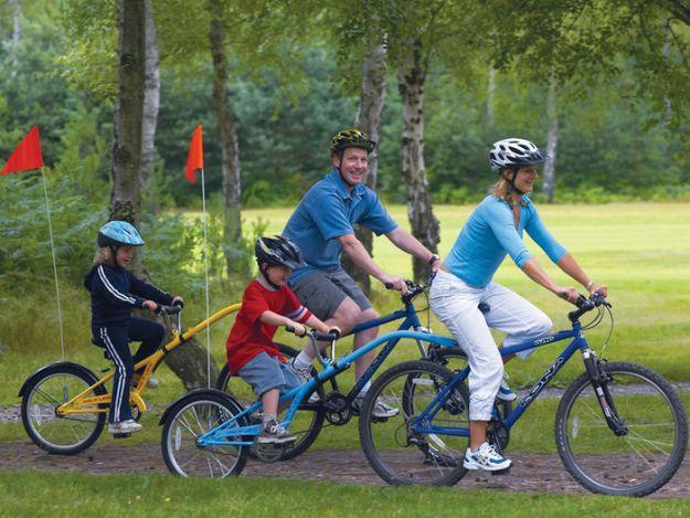 Устроить велопрогулку