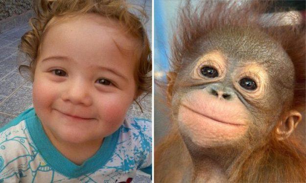 девочка и обезьянка