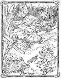 Антистресс черепахи